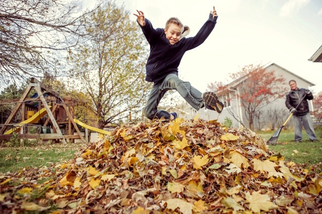 boy-jumping-in-leaves (1)