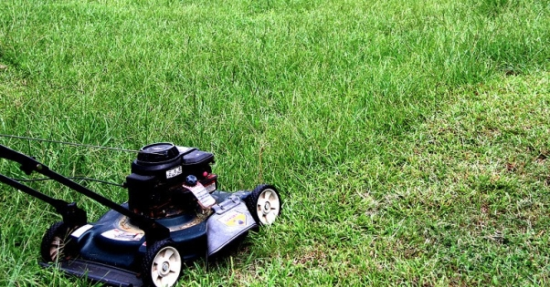 lawnmower in grass